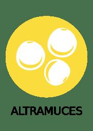 ALTRAMUSES